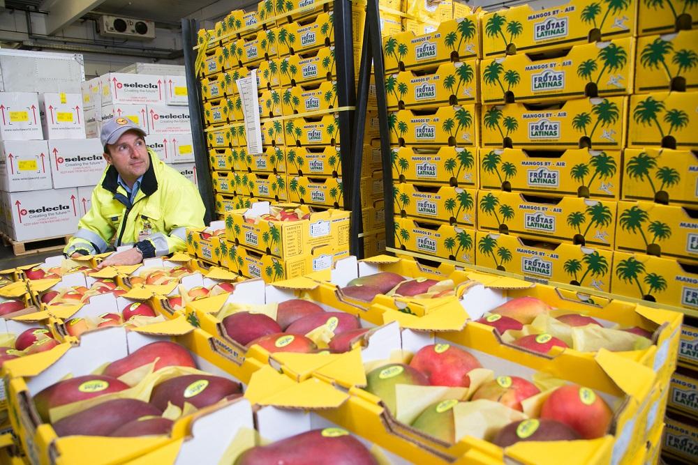 Logistics BusinessLufthansa Cargo Hands Frankfurt Perishables Service to 7Days