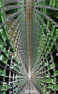Logistics BusinessGlocalisation