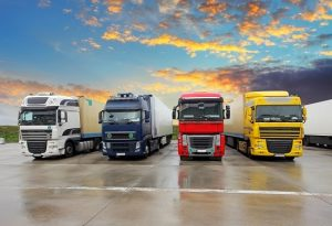 Logistics BusinessTransport and Haulage Dynamics Assessed in TMM Report